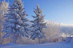 Прошлой зимой.jpg