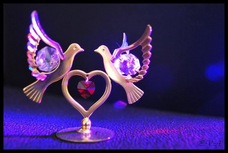 Полёт в неоновом свете любви