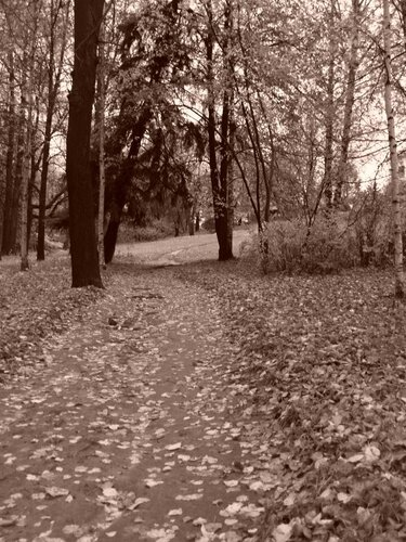 Карабиха, парк