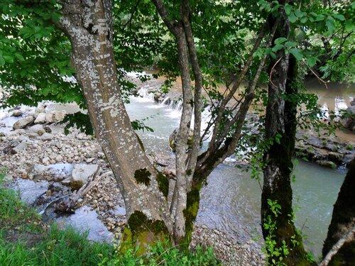 На притоках Курджипса.