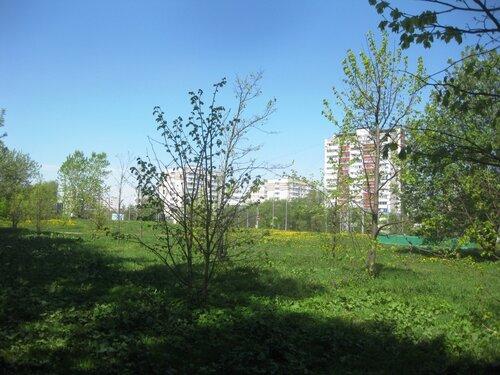 http://img-fotki.yandex.ru/get/5204/131884990.63/0_d50e2_f6e67e17_L.jpg