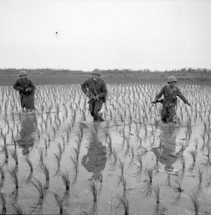 Progression de soldats du 1er REC (Régiment Etranger de Cavalerie) dans les rizières lors de l'opération