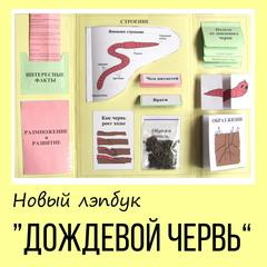 lapbook (лэпбук) своими руками