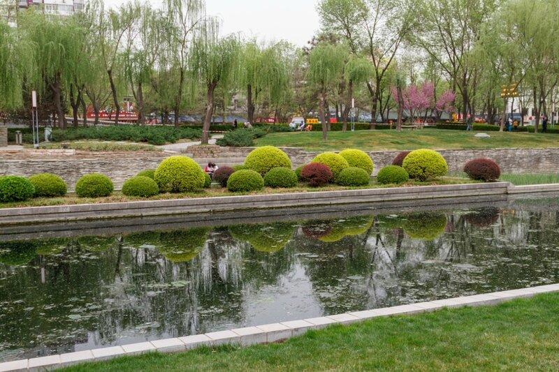 Искусно подстриженные кусты самшита и барбариса, парк стены династии Юань, Пекин
