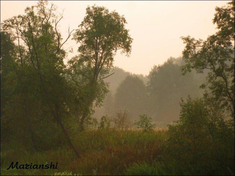 Летний смог, Малая Истра