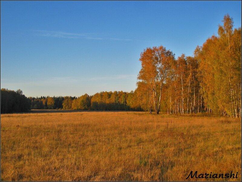 Октябрь в Подмосковье. Вечереет