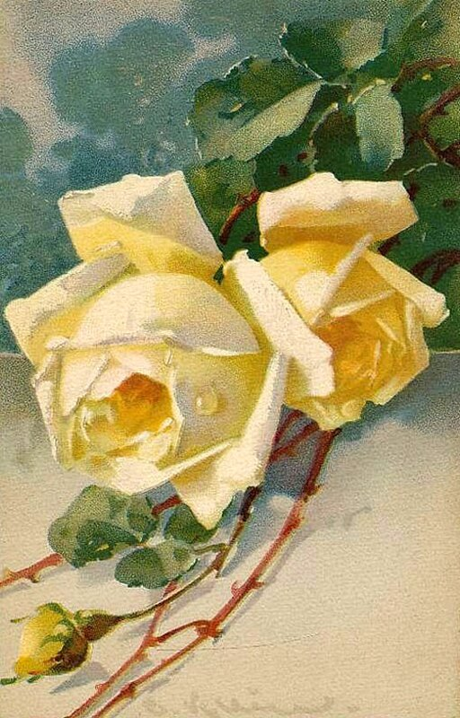 К. Кляйн. 39. Розы.