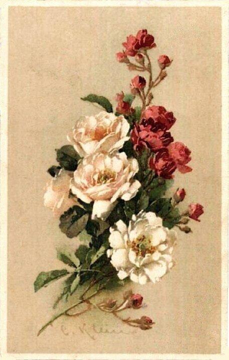 К. Кляйн. 68. Цветы. Ветки розы.