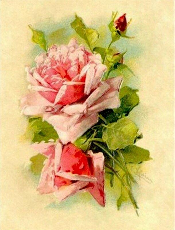 К. Кляйн. 152. Розы.