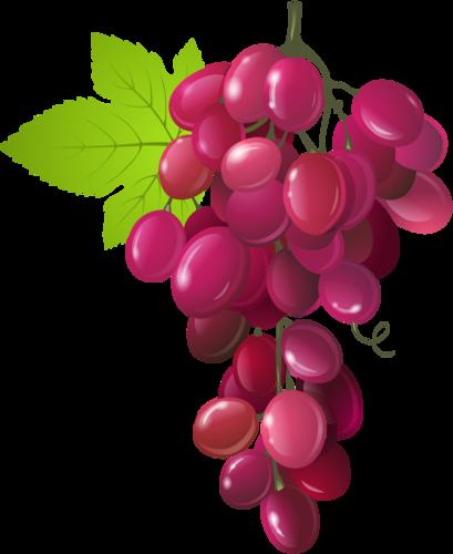 виноград (6).png