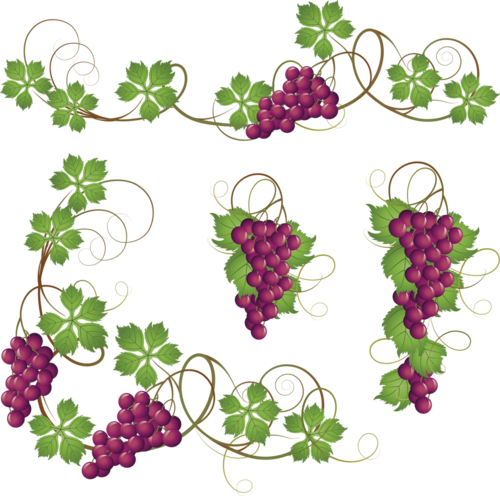 виноград (46).png