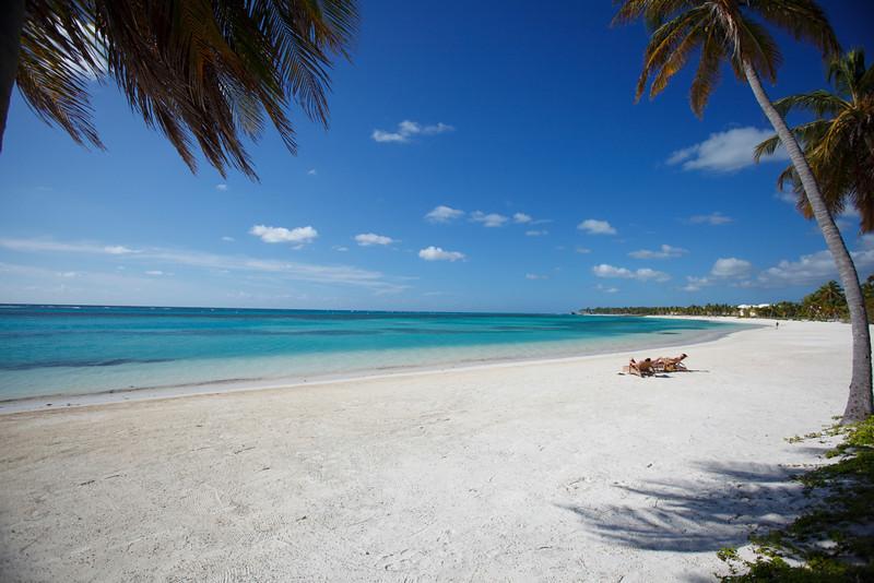 Водоросли заполонили доминиканские пляжи