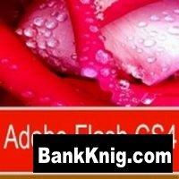 TeachPro - Официальное руководство Adobe Flash CS4