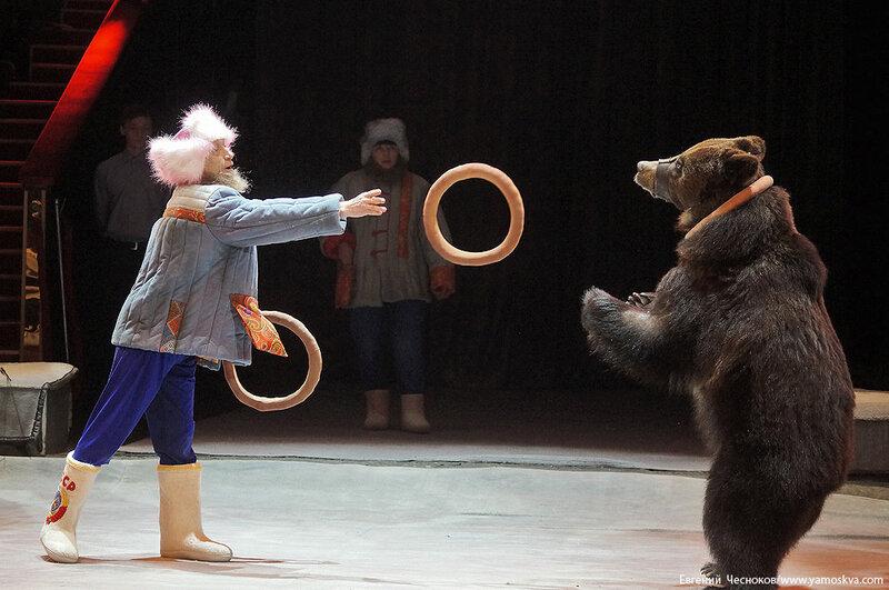 Весна. Цирк. 13.Медведь. И.Климентьев. 21.03.15.04..jpg