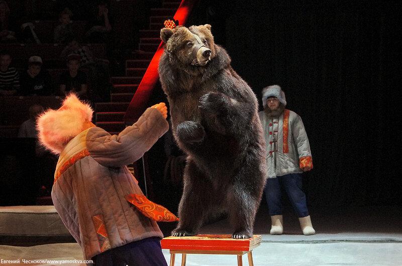 Весна. Цирк. 13.Медведь. И.Климентьев. 21.03.15.05..jpg