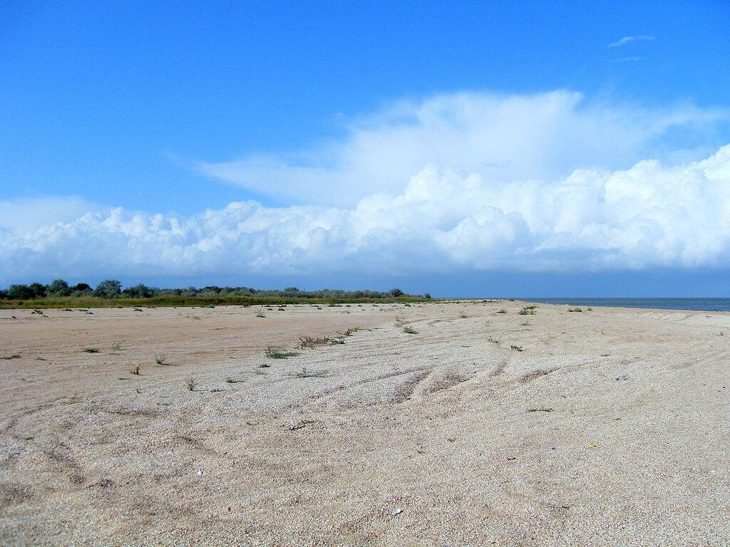 У моря, на песках ... SDC14801.JPG