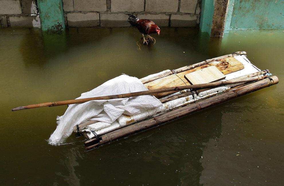 Филиппины. Петух--- ливневые дожди, тайфун и наводнение. 1-го августа 2012-го года
