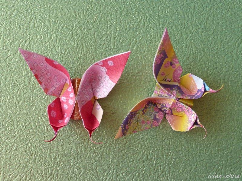 Бабочка Evi Binzinger