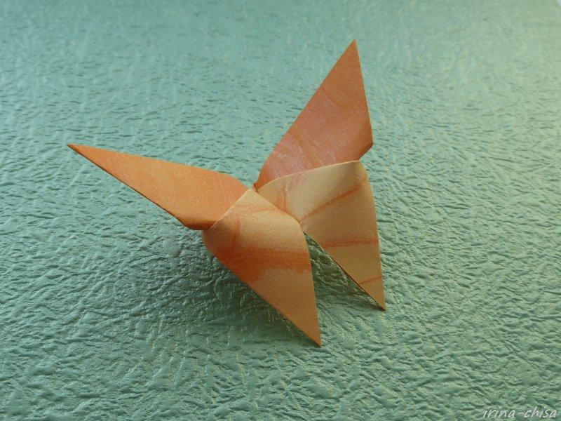 Бабочка Akira Yoshizawa