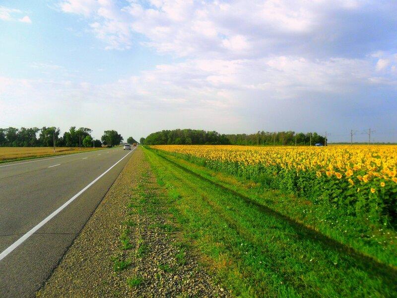 Между дорогами, шоссейной и железной ... SAM_8118.JPG