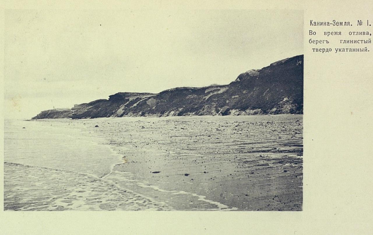 Канина-Земля. Во время отлива, берег глинистый, твердо укатанный