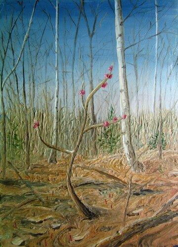 Донской А.Н. Весна (цветёт волчье лыко), 2000, к., м., 15х10