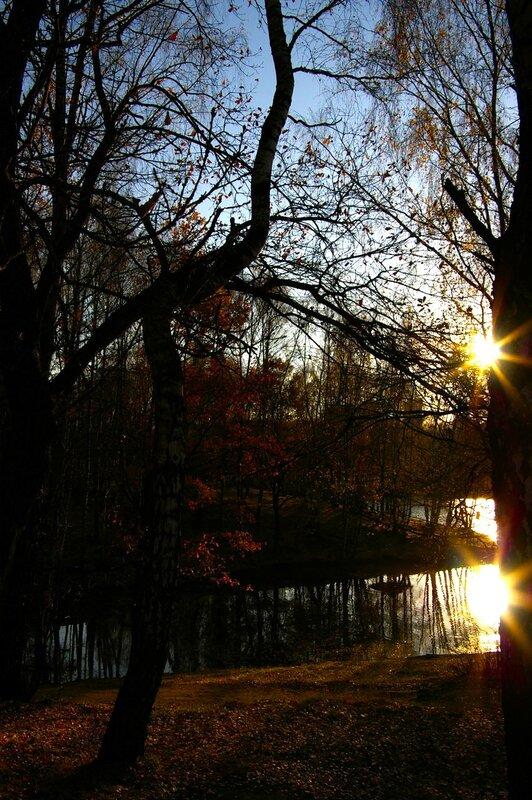 осень в Тропарево
