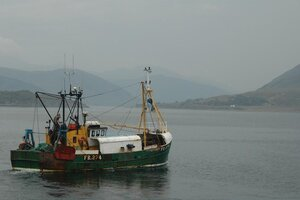 На Сахалине проводится проверка по факту обнаружения на морском судне трупа матроса