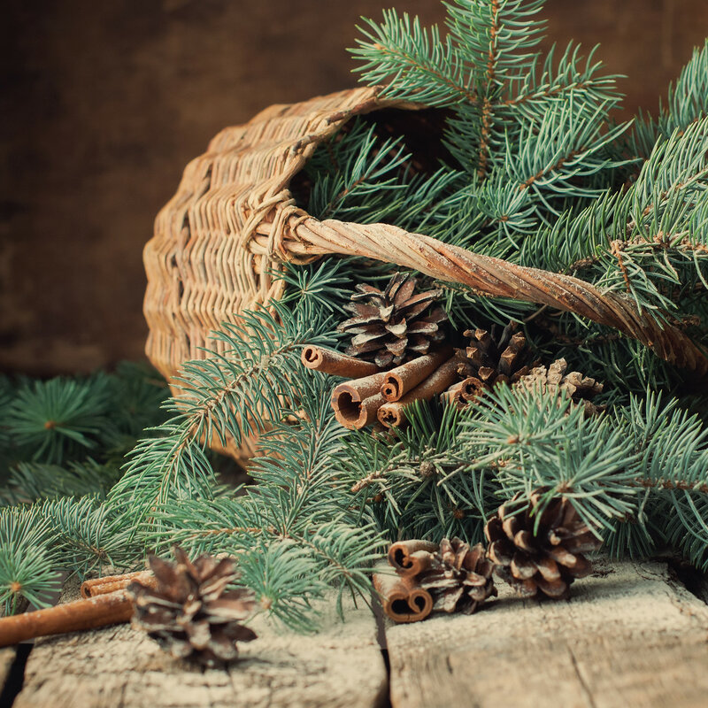Fir Tree Branches in a Rustic Basket on Wooden