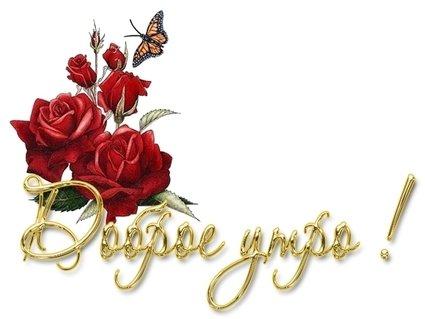Доброе утро! Розы и бабочка