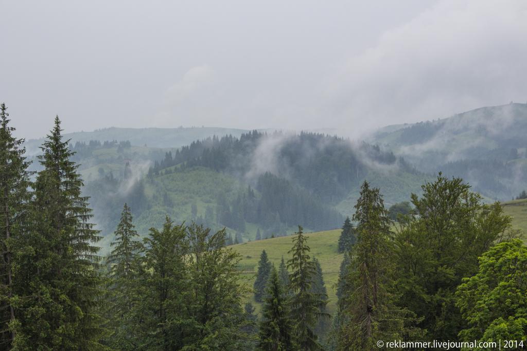 Туман Хутор Тихий (2).jpg