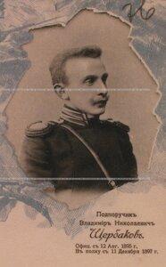 Подпоручик Владимир Николаевич Щербаков. Портрет.