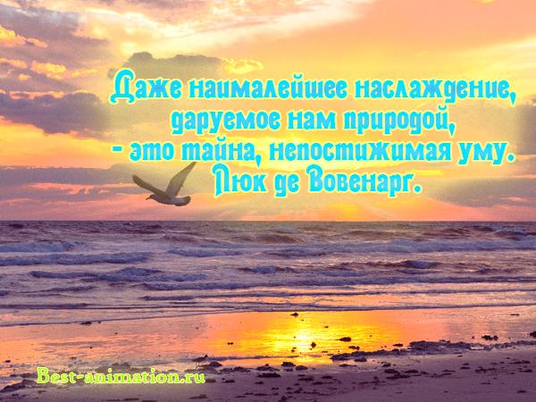 Цитаты великих людей - Сила природы, Красота природы – Даже наималейшее наслаждение, даруемое нам природой...