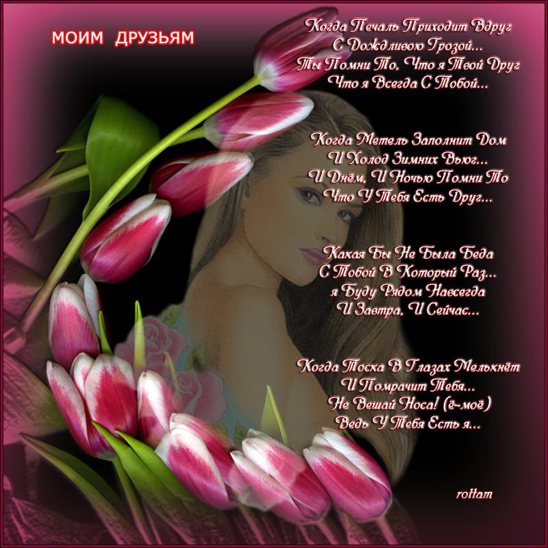 МОИМ ДРУЗЬЯМ.png