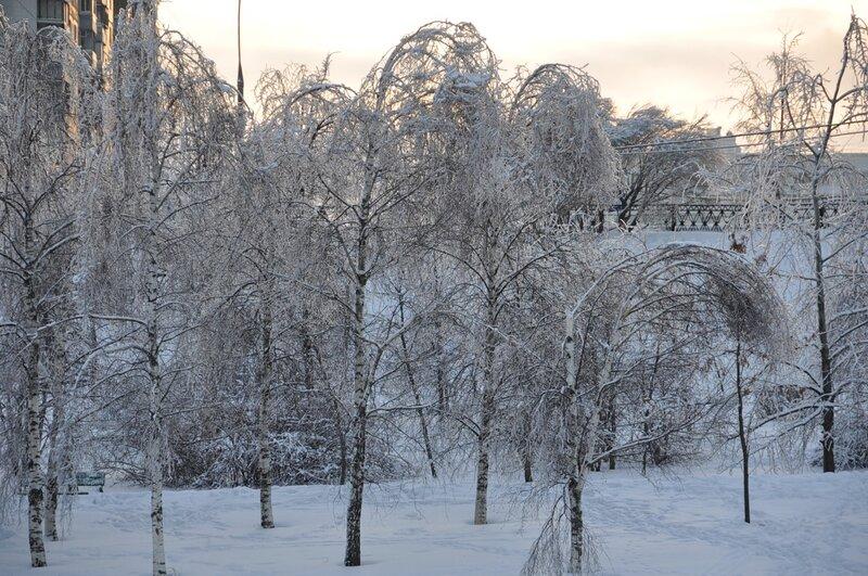 http://img-fotki.yandex.ru/get/5207/kookaburra7.28/0_4379d_77713d63_XL.jpg