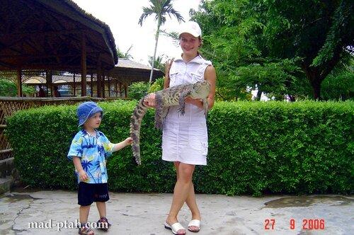 крокодил, океанариум, китай, хайнань