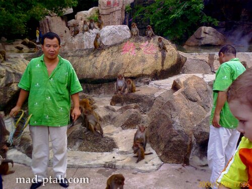 остров обезьян, хайнань, китай