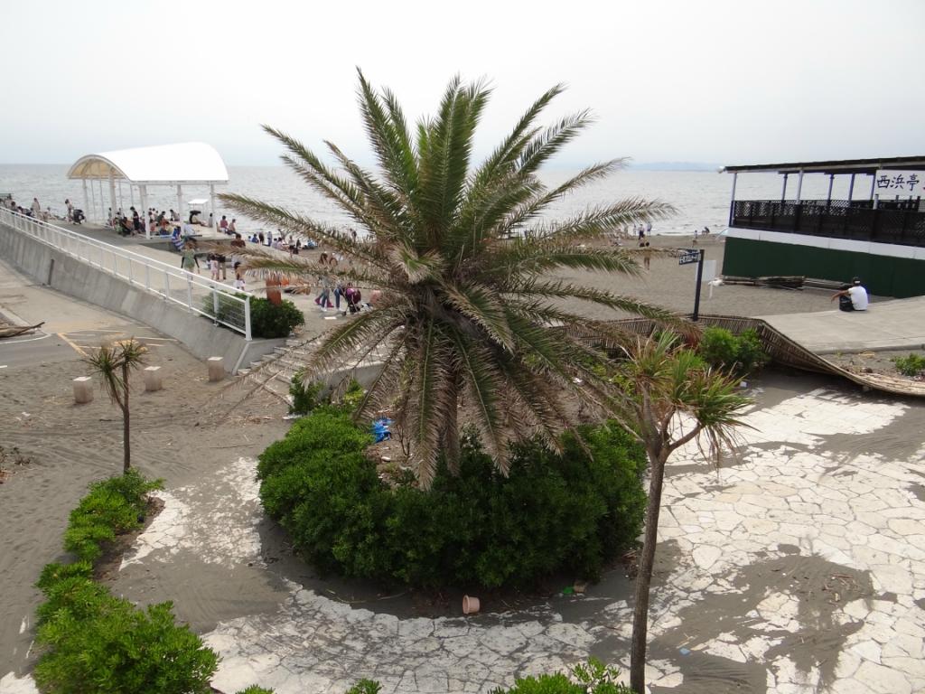 Открытие пляжного сезона. Эносима