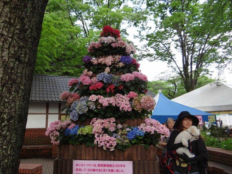 Toshimaen - парк развлечений и гортензий