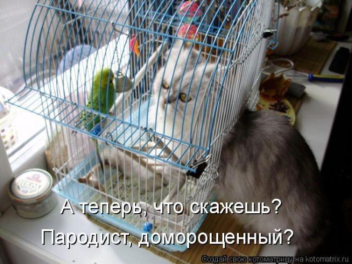 http://img-fotki.yandex.ru/get/5208/252028825.ac/0_de4e6_b6d289f4_orig.jpg