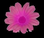 «doniar-HappySpring-pELEMENTY» 0_54fae_f369852_S