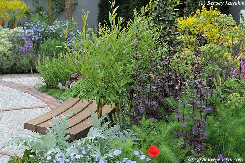 A modern Apothecary Garden (20).jpg