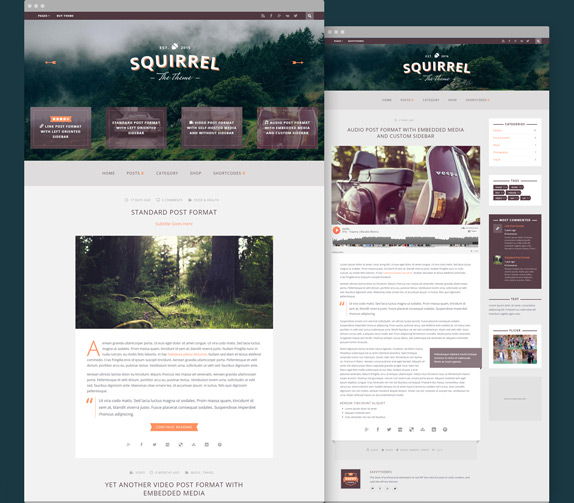Squirrel a Responsive WordPress Blog Theme