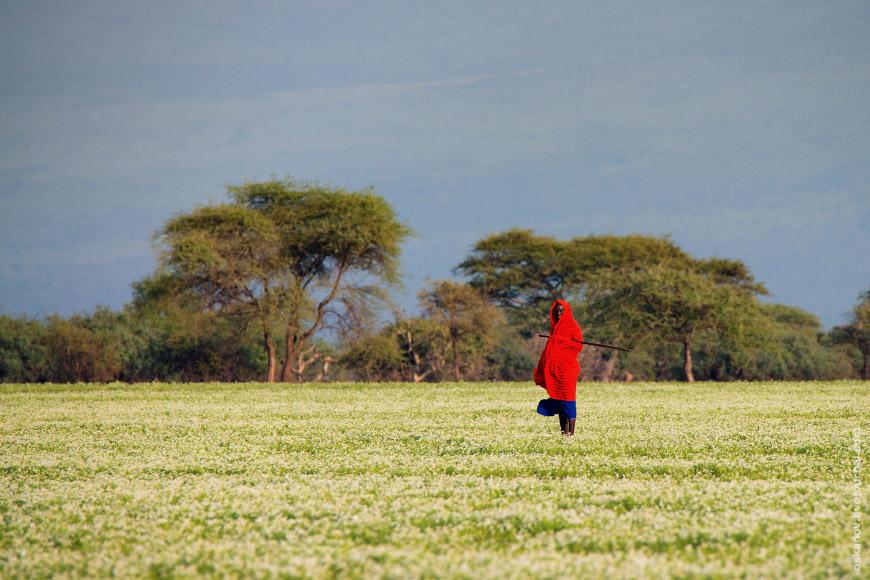 Потом мы поехали в Танзанию. Прошли границу, пересели на танзанийскую машину, и взяли курс на С