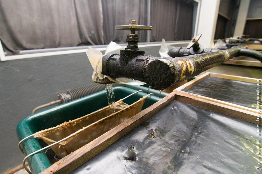11. Перед вами не ванна, а пластиковый бассейн, который является домом для так называемых сегол