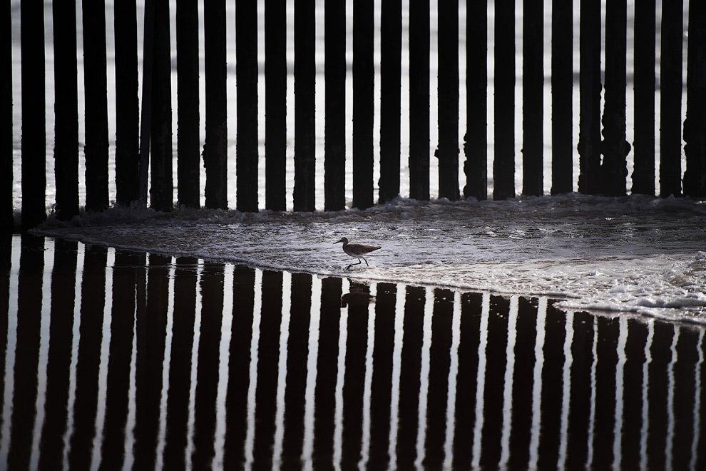 5. Сквозь забор видно, как машины пересекают границу с Мексикой, 13 февраля 2017. (Фото Jim Wat