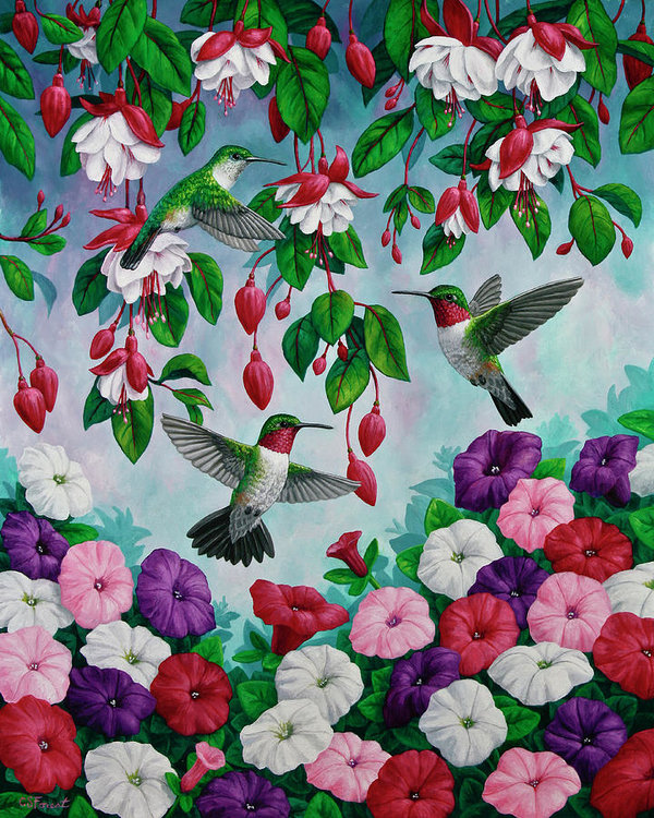 bird-painting-hummingbird-heaven-crista-forest.jpg