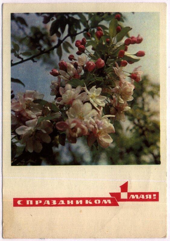1970 - 1 Мая - (Дергилев И.).jpg