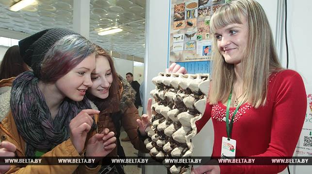 Беларусь заняла самое высокое место среди стран СНГ в глобальноме креативности