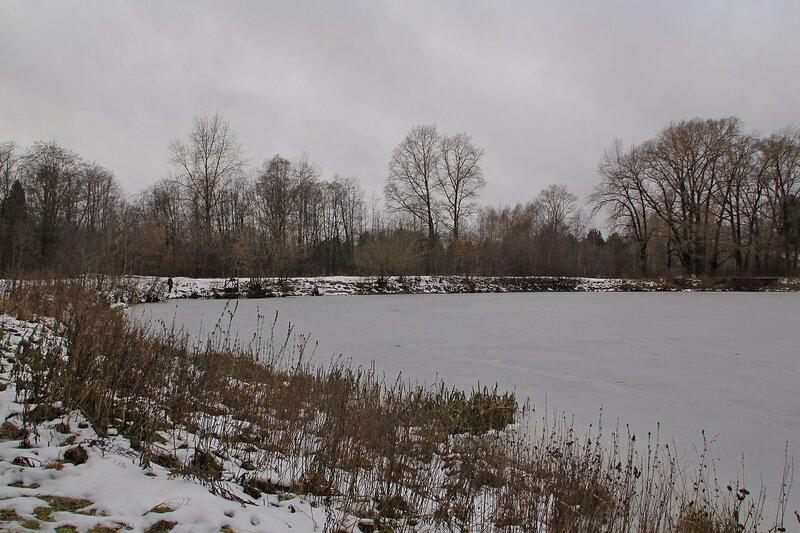 Пруд на реке Плоской в Коминтерне. Вид на дамбу.